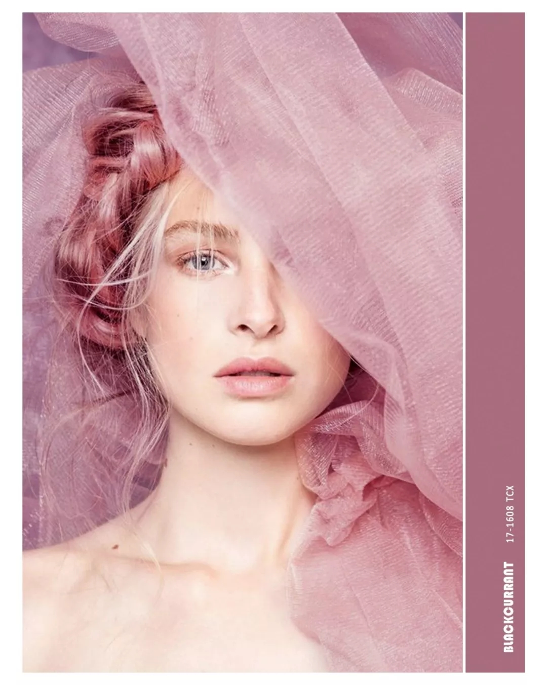 2019 spring and summer key color, early beauty! (figure 1)